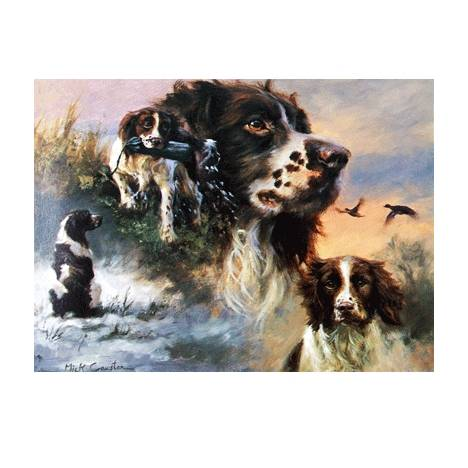 Springer Spaniels (English Springer) Blank Greeting Cards - 6 Pack