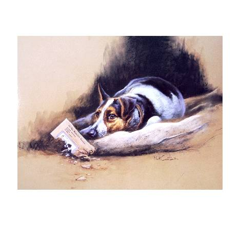 Thats Torn It (Jack Russell) Blank Greeting Cards - 6 Pack