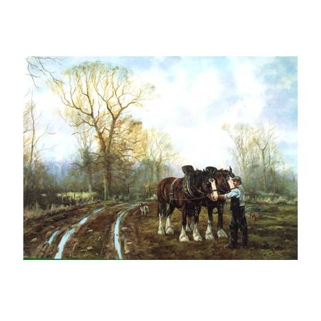 Unhitching (Draft Horse) Blank Greeting Cards - 6 Pack