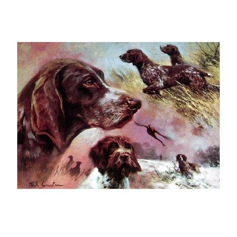 German Pointers (Shorthair and Wirehair) Blank Greeting Cards - 6 Pack