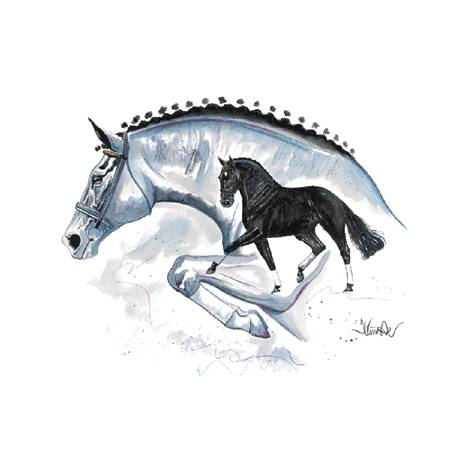Genua (Eventing Horse) By: Jan Kunster, Matted