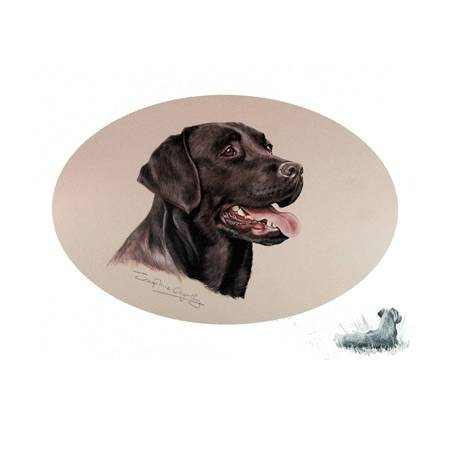 Black Lab by: Josephine Copley