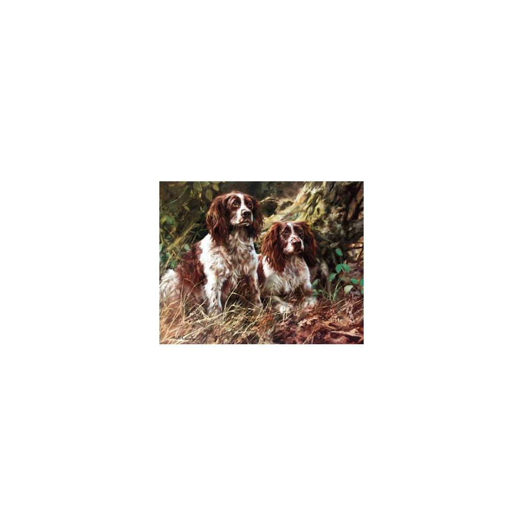 Pair of Spaniels By: Mick Cawston