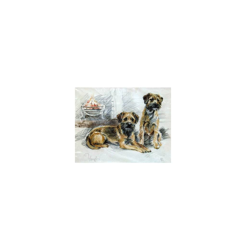 Border Terriers By: David Thompson