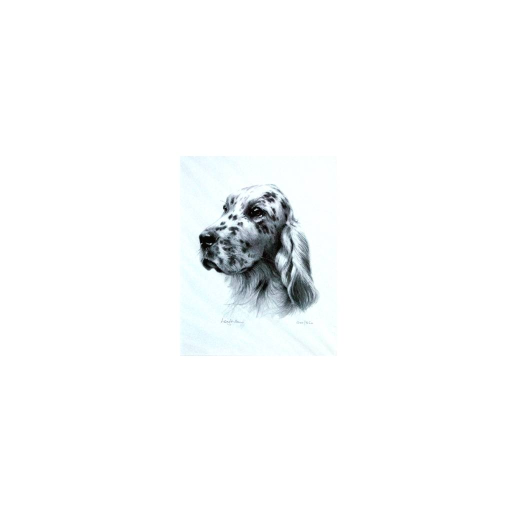 English Setter By: Sandra Leighton, Matted