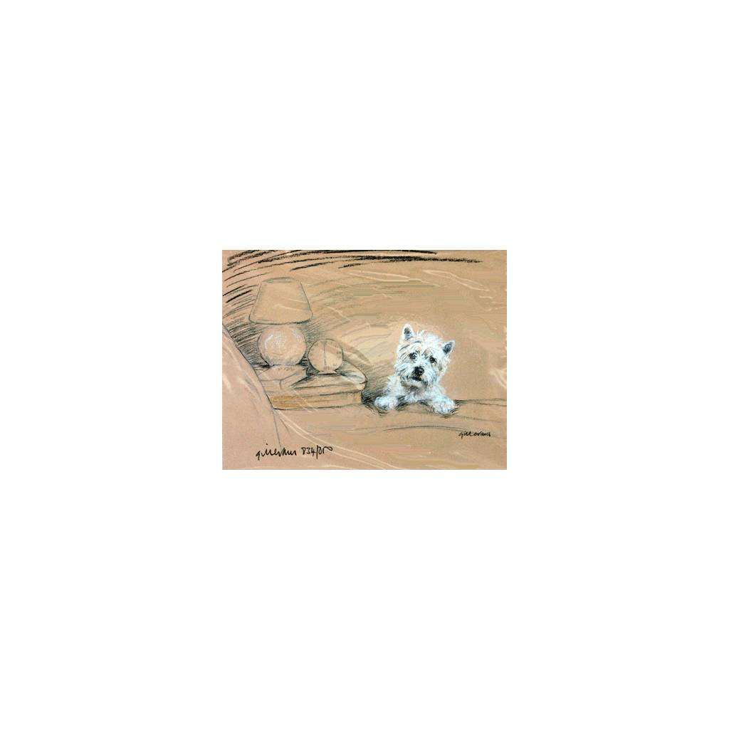 Westie by Bed By: Gill Evans, Matted