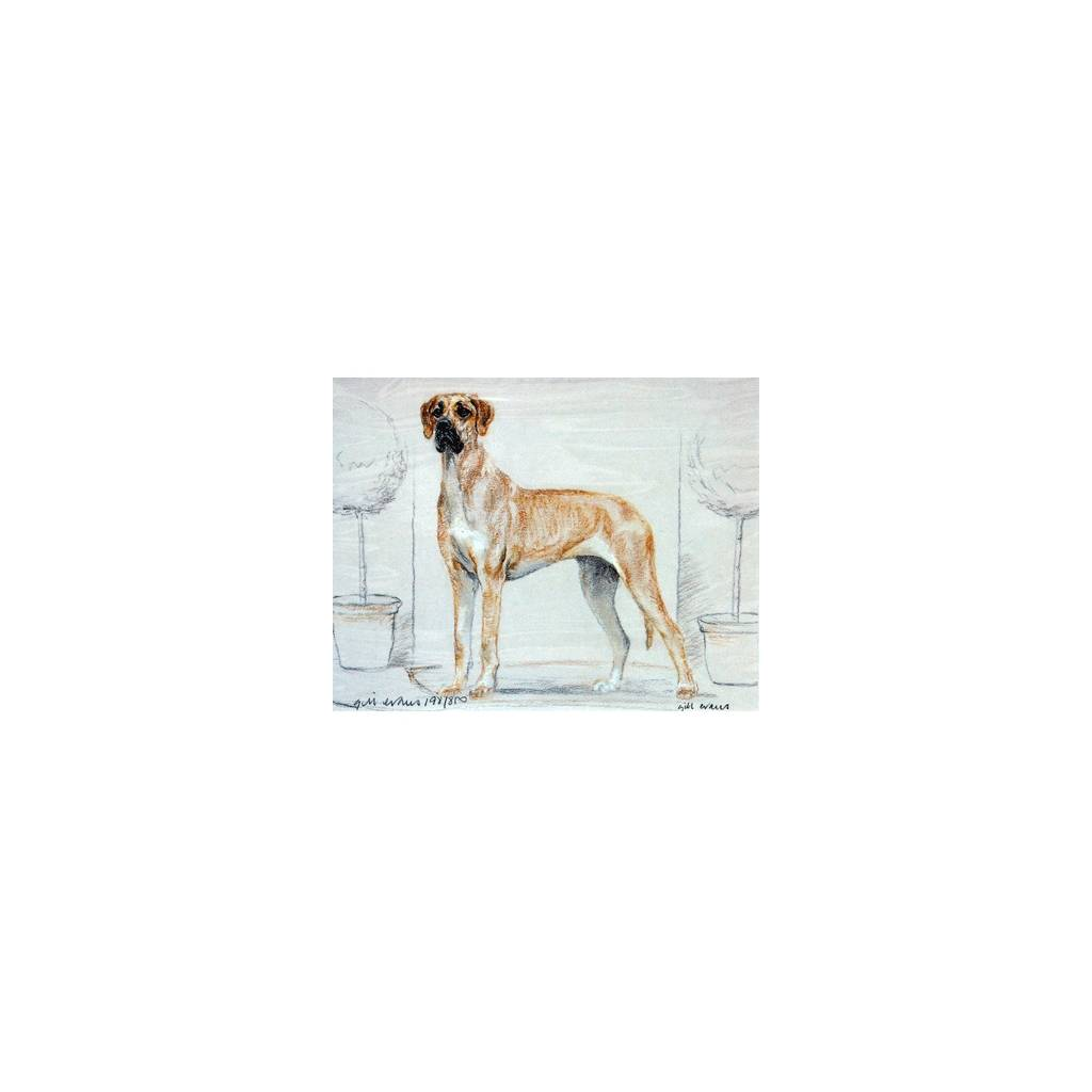 Great Dane By: Gill Evans, Matted