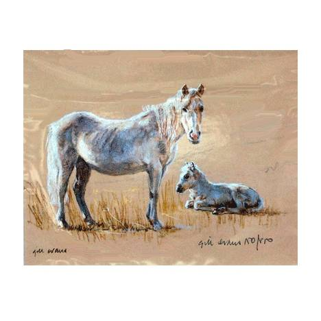 Mare & Foal By: Gill Evans, Matted