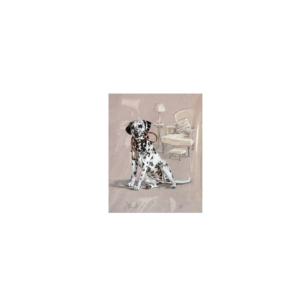 Dalmatian By: David Thompson, Matted