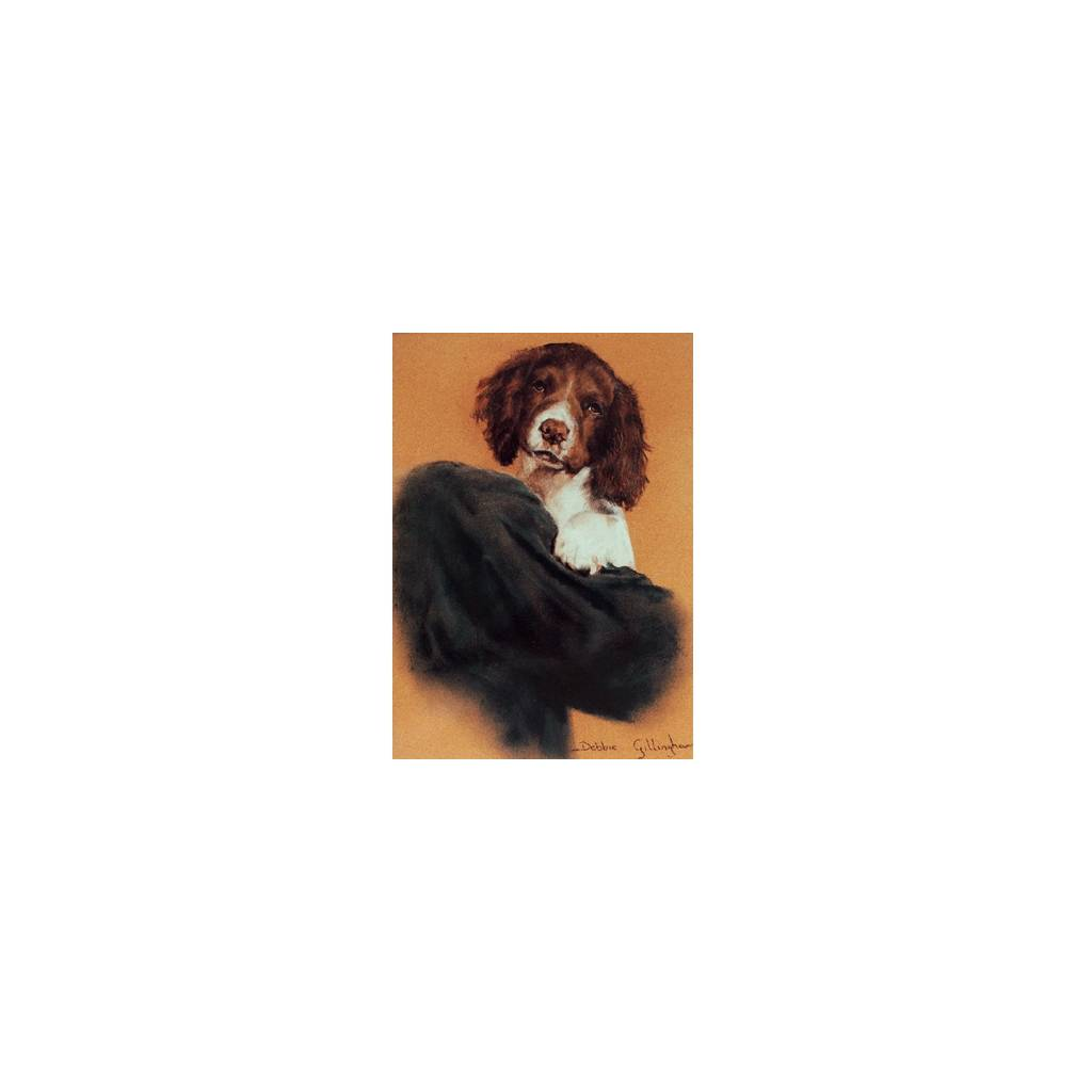 Pick of the Litter (English Springer) Blank Greeting Cards - 6 Pack