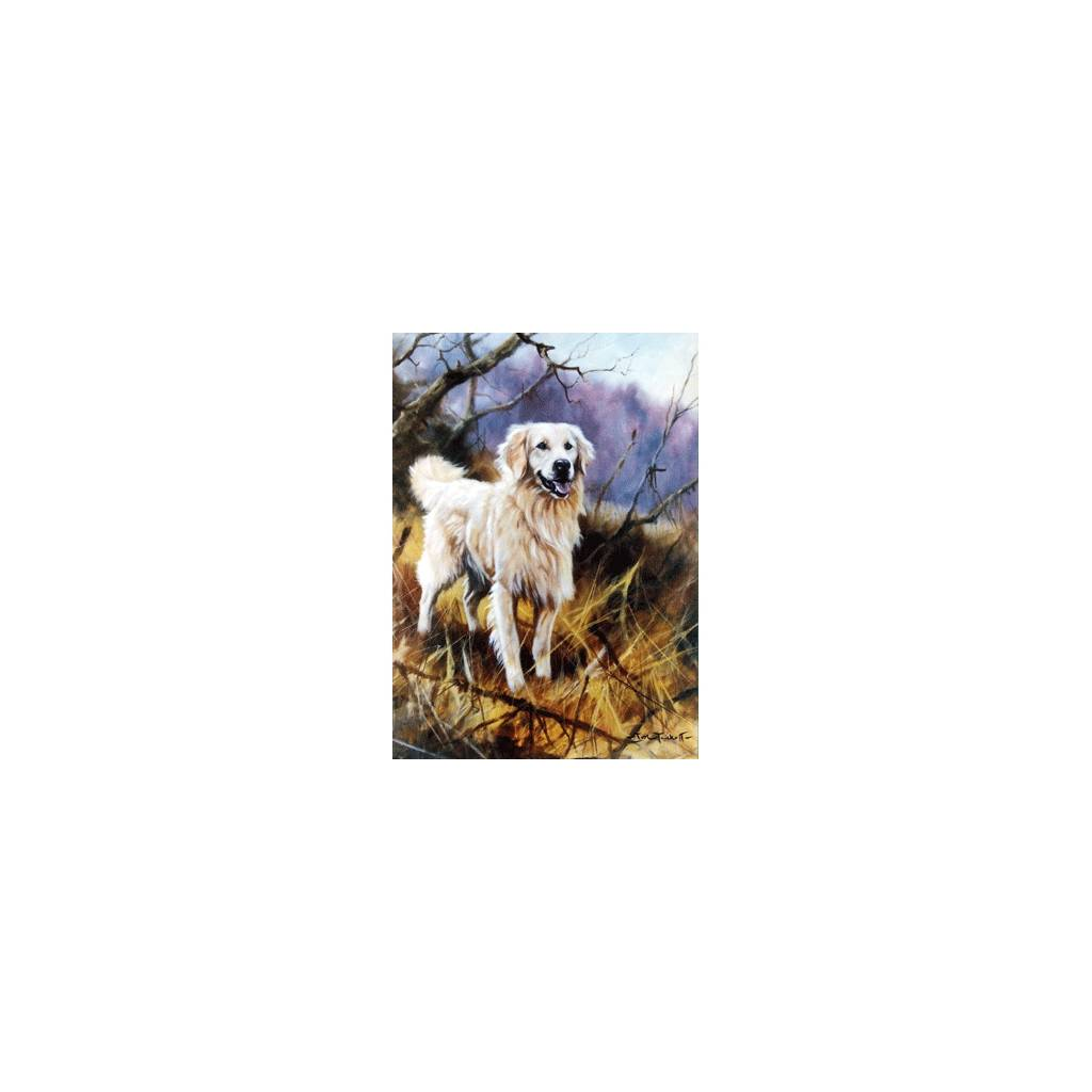 Play Time (Golden Retriever) Blank Greeting Cards - 6 Pack