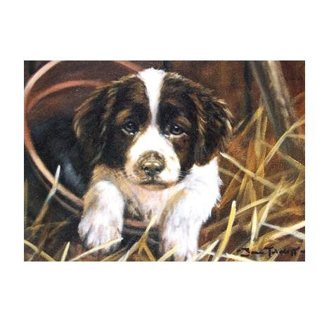 Potty (English Springer) Blank Greeting Cards - 6 Pack
