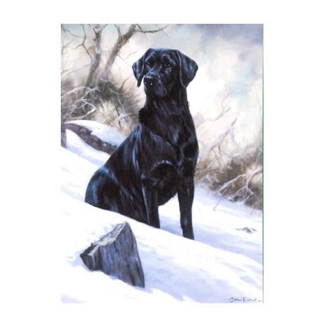 Winter Boy (Labrador Retriever) Blank Greeting Cards - 6 Pack