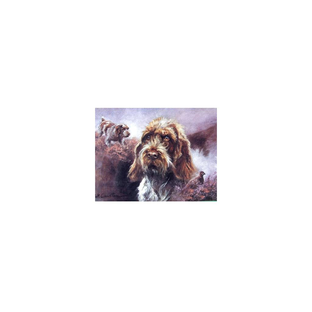 Wirehaired German Pointer Blank Greeting Cards - 6 Pack