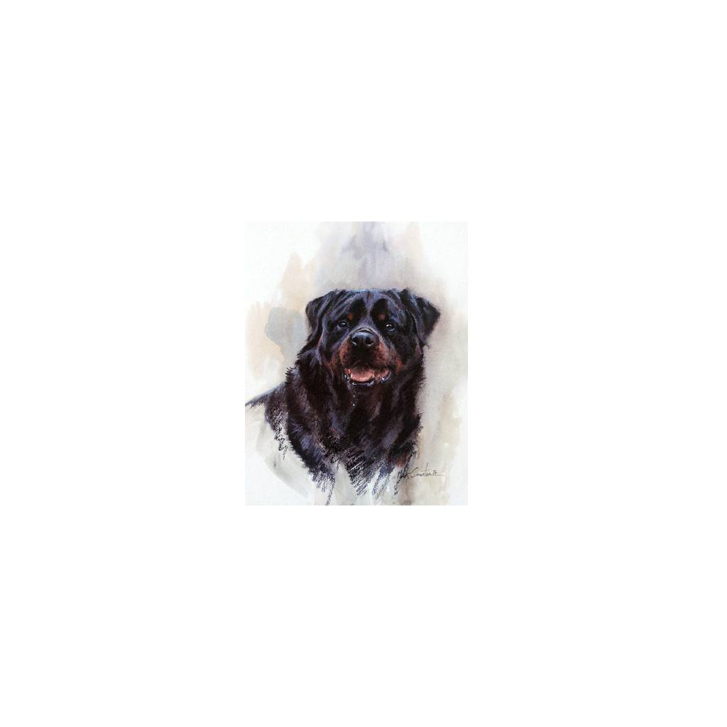 Rottweiler By: Mick Cawston