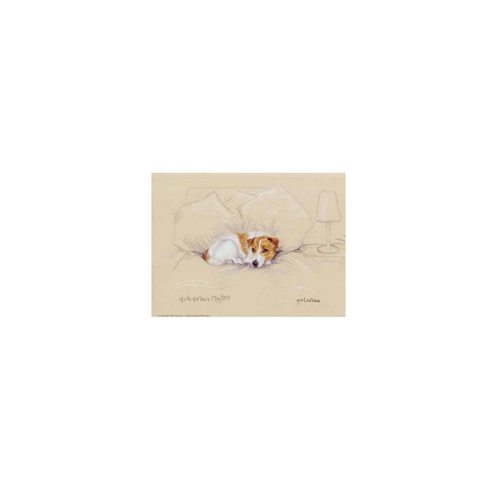 Terrier on Bed By: Gill Evans, Matted