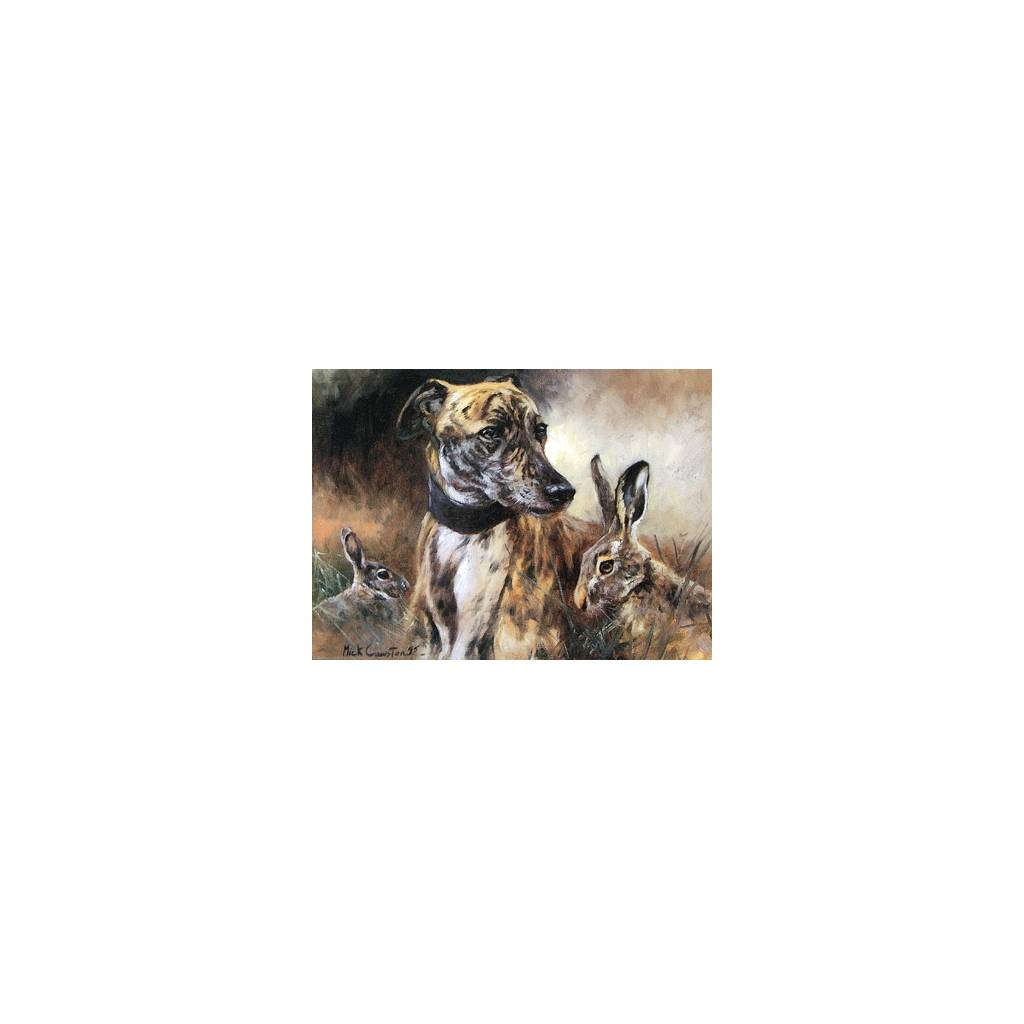 Dignity (Greyhound) Blank Greeting Cards - 6 Pack