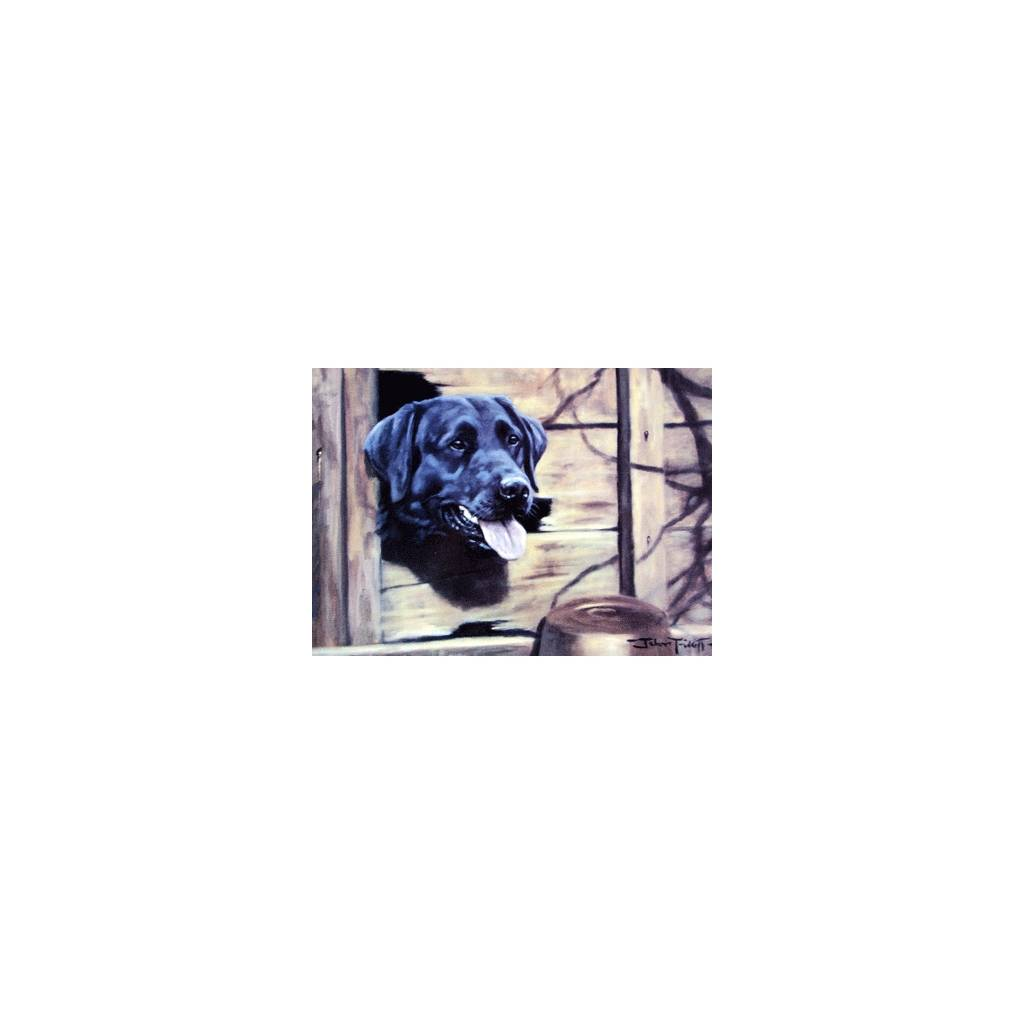 Gap in the Fence (Labrador Retriever) Blank Greeting Cards - 6 Pack