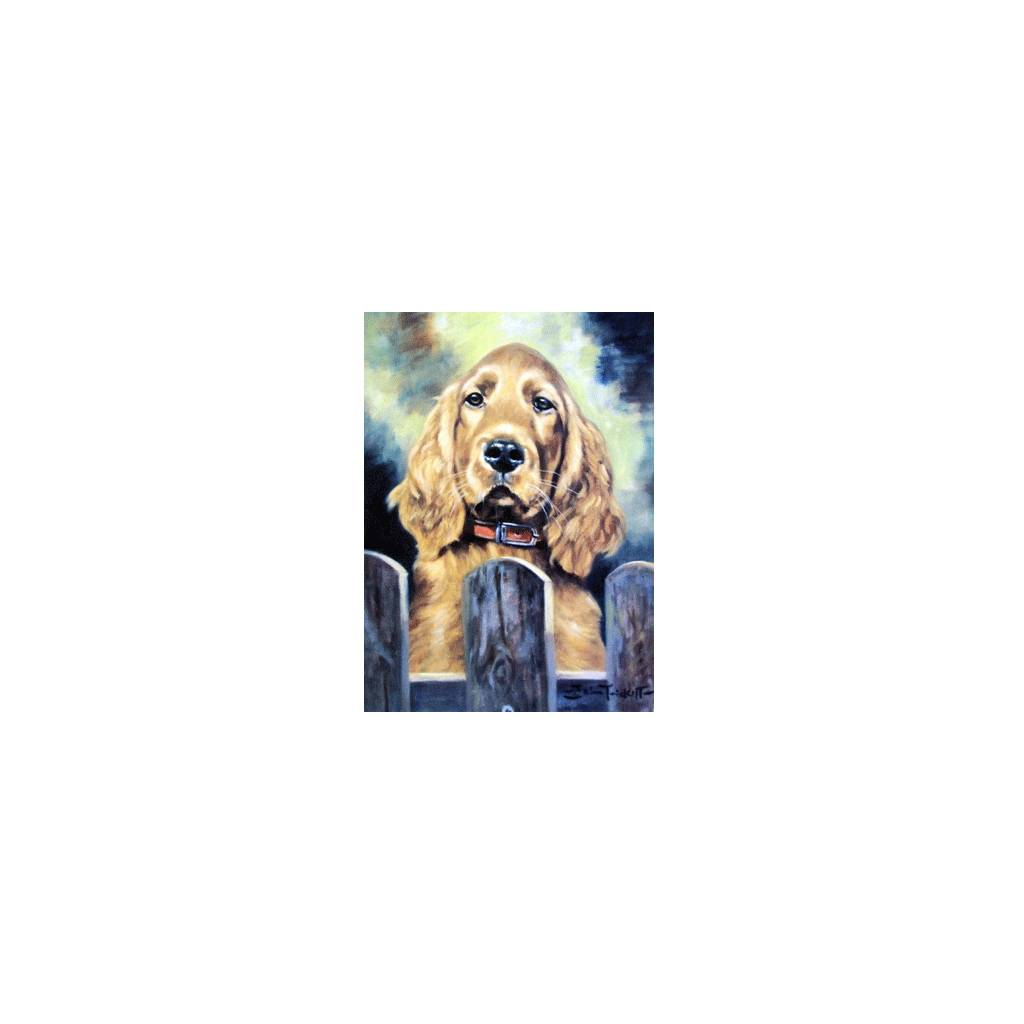 Irish Eyes (Cocker Spaniel) Blank Greeting Cards - 6 Pack