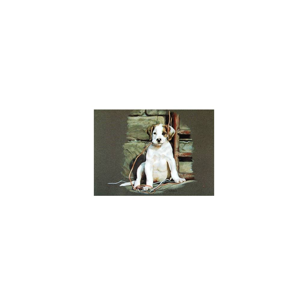 All Strung Up (Puppy) Blank Greeting Cards - 6 Pack