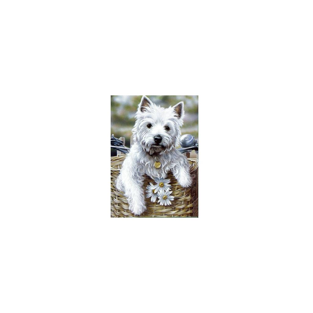 Hitching a Ride (West Highland Terrier) Blank Greeting Cards - 6 Pack