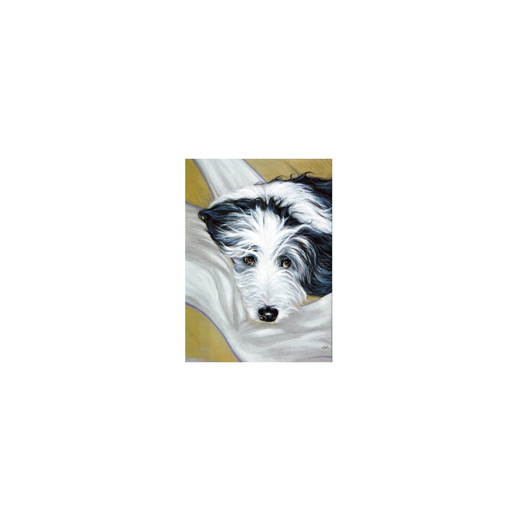 I Don't Think So (Bearded Collie) Blank Greeting Cards - 6 Pack