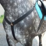Martingales & More