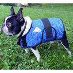 Techniche HyperKewl Evaporative Cooling Dog Coat