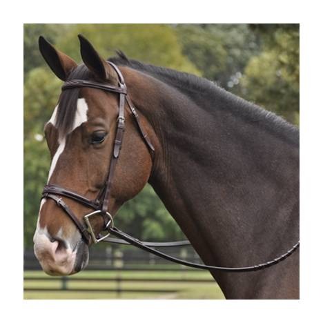 Exselle Elite Plain & Fancy Bridle