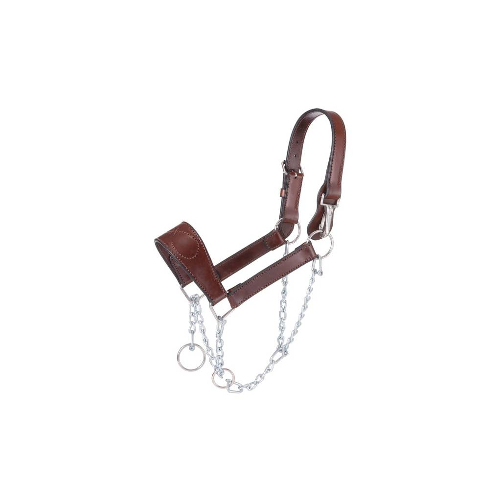 Tough-1 Leather Mule Halter with Draw Chain