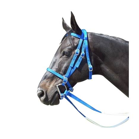 Racing Bridle - Nylon