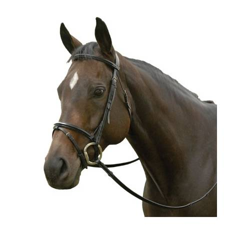 Exselle Elite Plain Raised Event Bridle