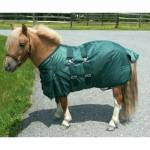 Miniature Horse Heavyweight Turn Out Blanket