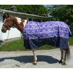 Free Runner MW Fun Print Turn Out Blanket