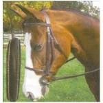 Hunter-Jumper Bridles