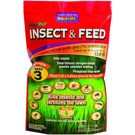 Insect & Feed