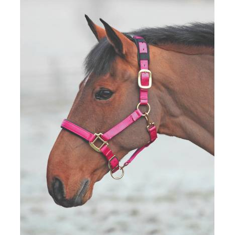 Shires Topaz Leather Breakaway Nylon Headcollar