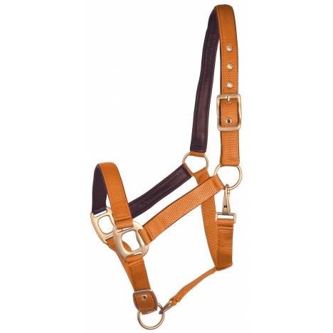 Gatsby Leather Padded Adjustable Nylon Halter