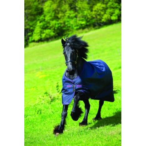 Amigo XL Turnout Blanket - Medium Weight