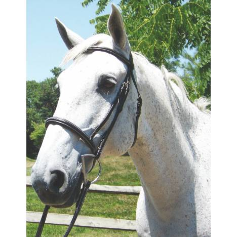 Pro-Trainer Show Standing Martingale