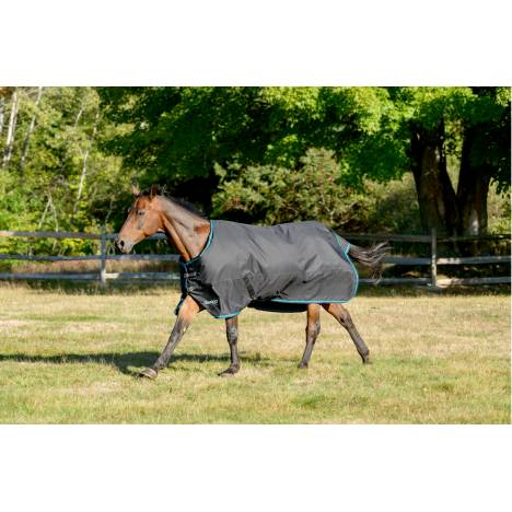 Shires Tempest Plus Turnout 300 Gm Blanket