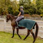 Saratoga Horseworks Fleece Exercise Rug - Navy/Hunter Green - 78-80