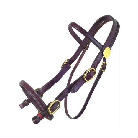 Tucker Plantation Bridle