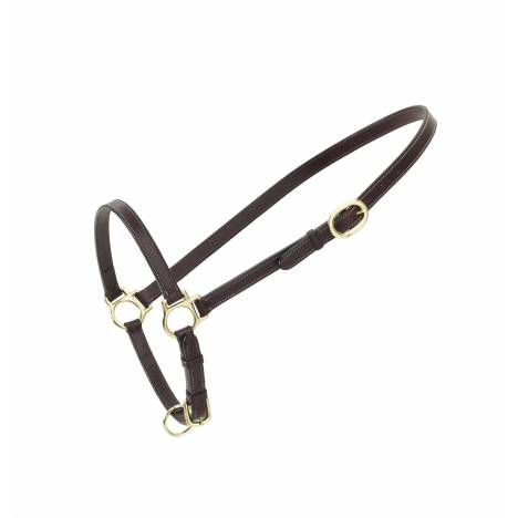 Ovation Leather Traditional Grooming Halter