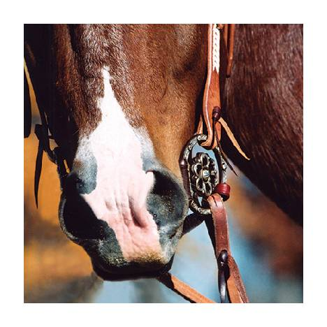 Classic Equine Clover Center Dee Ring Snaffle