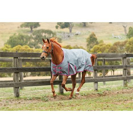 Saxon 1200D Standard Neck Heavy Turnout Blanket With Gusset ll