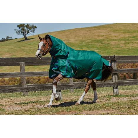 Weatherbeeta Comfitec Plus Dynamic Detach-A-Neck Heavy Blanket