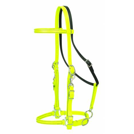 Weaver Trail Gear Halter Bridle Combo