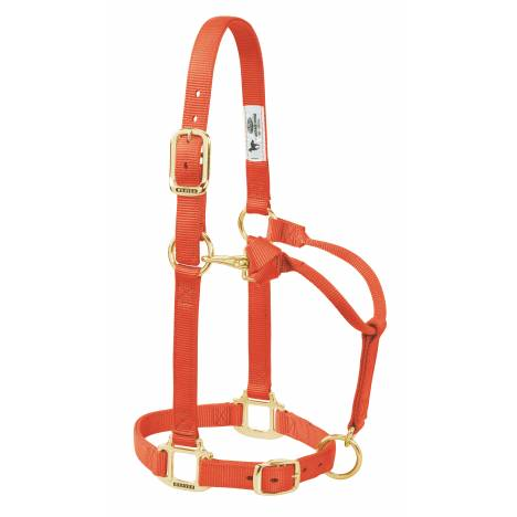 Weaver Original Adjustable Chin & Throat Halter - Foal