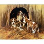 Sally Mitchell Fine Art Dog Prints - An Englishman's Home is His